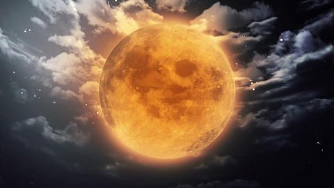 pumpkin Halloween moon dark sky Animation