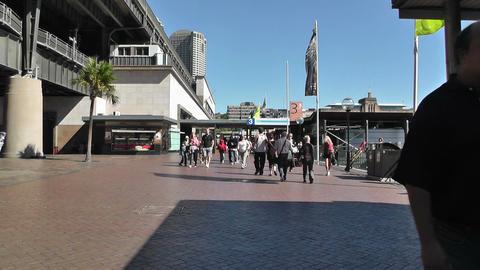 Sydney Circular Quay Station 01 Footage