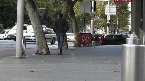 Sydney Downtown Elizabeth Street at Hyde Park 02 Stock Video Footage