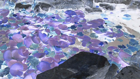Lotus leaf in pond,rockery stone and shaking water,ink... Stock Video Footage