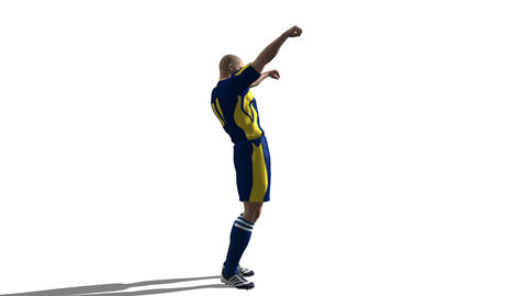 サッカー選手 Stock Video Footage