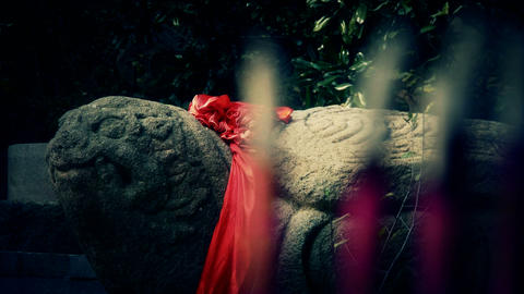 Stone turtle totem with Red ribbon,Burning incense in... Stock Video Footage