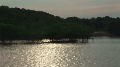 Brazil: travel on Amazon river 2 Stock Video Footage
