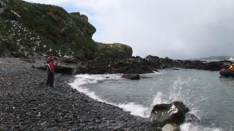 South Georgia: expeditioon arriving to the island 1 Stock Video Footage
