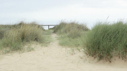 Young couple walking over sand dune Stock Video Footage