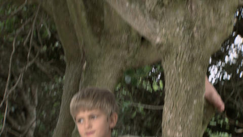 Two boys in a tree Stock Video Footage