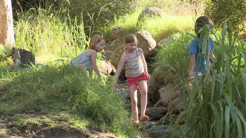 Children walking over rocks in river Stock Video Footage