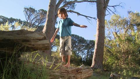 Boy walking along log Stock Video Footage