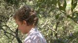 Boy walking along log by river Footage