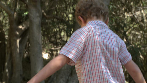 Boy walking along log by river Stock Video Footage