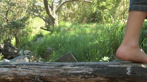 Feet of child walking along log Stock Video Footage