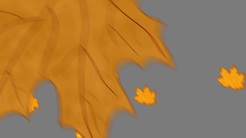 Falling Leaves Transition Animation