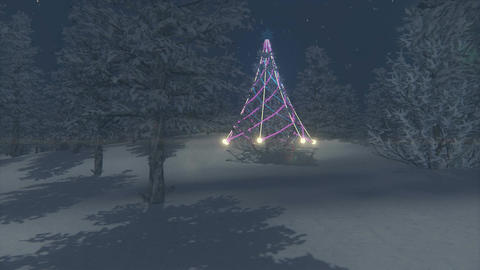 Illuminated Christmas tree among snowy forest Footage