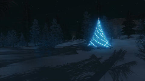 Illuminated Christmas tree among night forest Footage