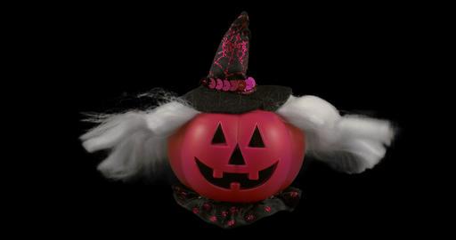 pumpkin violet hat alpha Footage