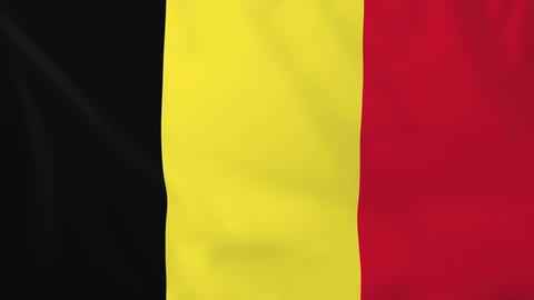 Flag of Belgium Animation