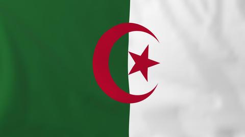 Flag of Algeria Animation
