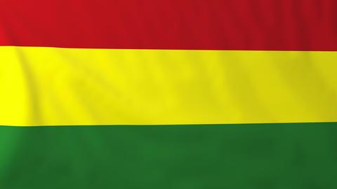Flag of Bolivia Animation