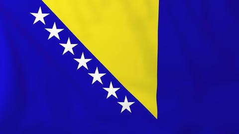 Flag of Bosnia/Herzegovina Animation