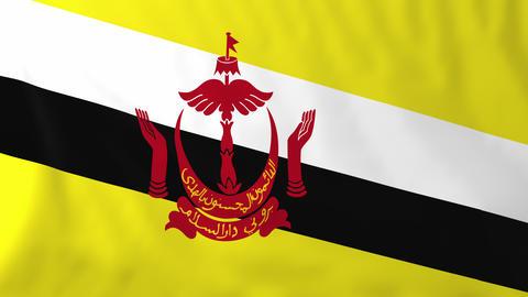Flag of Brunei Animation