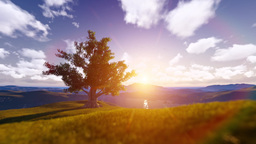 Tree Sunrise among Mountains Animation