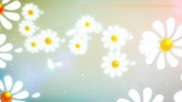 Flying Camomiles Wipe (alpha channel, Full HD) 画像