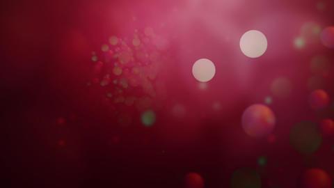 Christmas Sparkle Animation