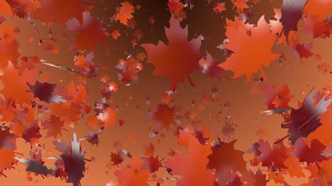 Autumn leaves in orange Animation