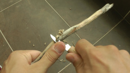Using woodcarving knife Footage