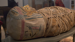 Ancient Egypt Mummy Exposed Footage