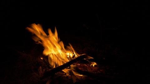 Bonfire, Campfire, Fireplace Footage