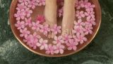Woman placing feet in bowl of water and flowers Footage