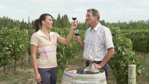 Couple wine tasting in vineyard Stock Video Footage
