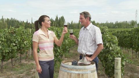 Couple wine tasting in vineyard Stock Video Footage