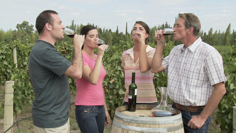 People wine tasting in a vineyard Stock Video Footage