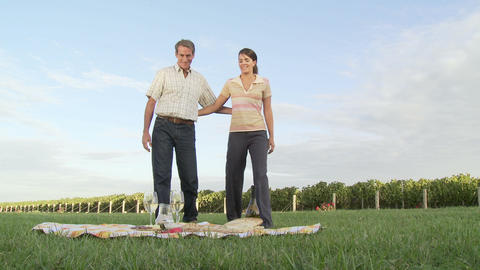 Couple having wine at picnic in vineyard Stock Video Footage