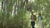 Two women hiking through forest Footage