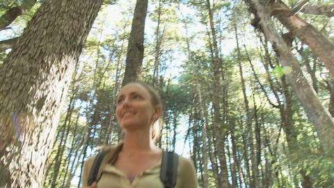 Two women hiking through forest Stock Video Footage