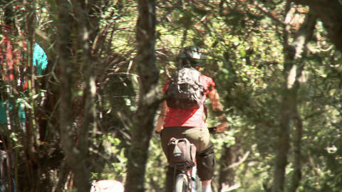 Four people cycling in forest Stock Video Footage