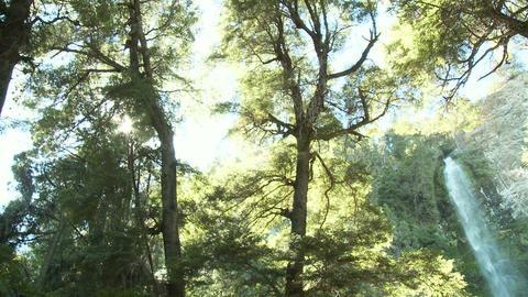 Cascada de la virgen waterfall in argentina Stock Video Footage
