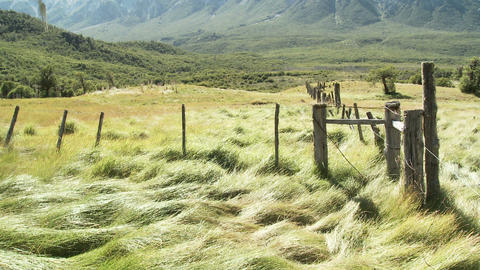 Field landscape and mountain Stock Video Footage