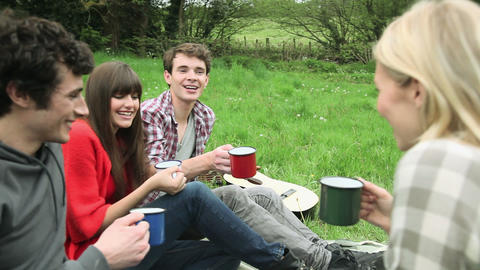 Friends in a field, toasting with mugs and drinking Stock Video Footage