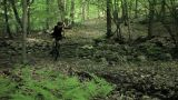 Male cyclist riding through forest Footage