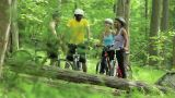 Four cyclists in forest Footage