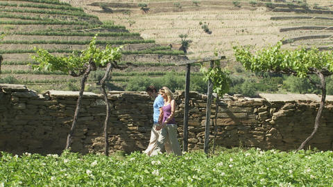 Couple walking through a vineyard in scenic location Stock Video Footage