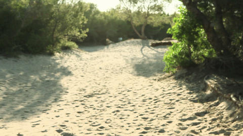 Three young friends running on sand Stock Video Footage