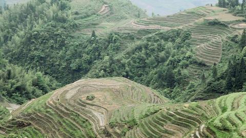 China, guangxi, longsheng, dragon's backbone rice terraces Stock Video Footage