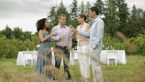 Four people toasting with wine glasses at farm dinner party Stock Video Footage
