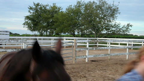 Woman leading horse in paddock Stock Video Footage