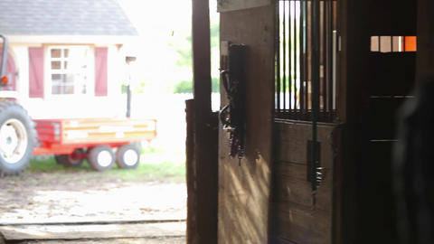 Man hanging up horse's reigns on stable door Stock Video Footage